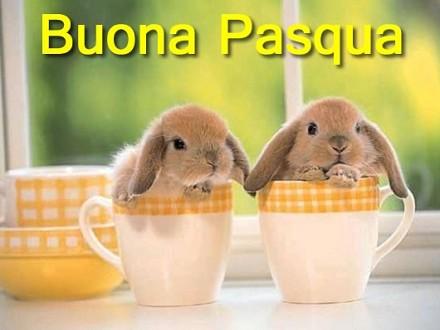 Auguri Buona Pasqua, serena e felice: fr