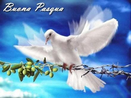 Auguri Buona Pasqua frasi, sfondi, immag