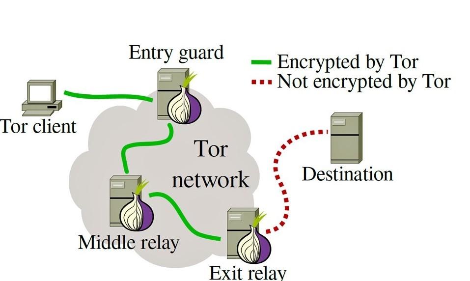 Bucato anonimato su Tor per navigare nel