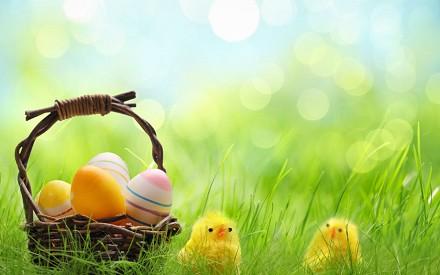 Come fare Auguri di Pasqua più belli, si