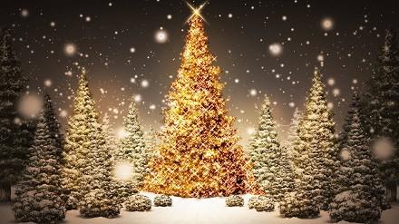 Frasi celebri Auguri di Natale per augur