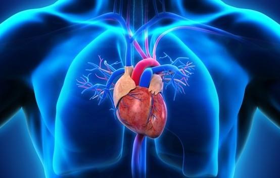 T-shirt per controllare cuore e respiro: